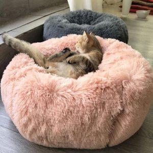 Lit Confortable pour Chien & Chat